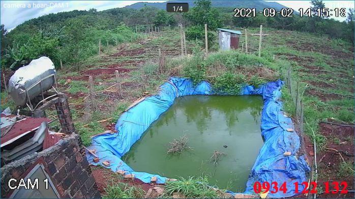 Hình ảnh camera tại vườn rẩy